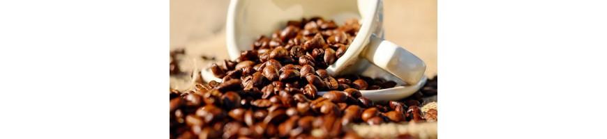 Origine de notre café Vietnamien